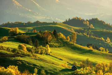 Zelfklevend Fotobehang Honing mountainous countryside at sunset. landscape with grassy rural fields and trees on hills rolling in to the distance in evening light. distant ridge and valley in haze. fantastic scenery in springtime