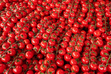 Branches of red cherry tomatoes for sale.