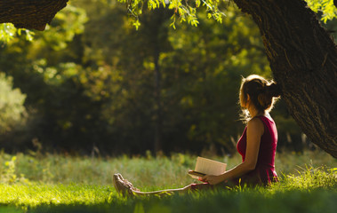 sunny portrait of a beautiful girl sitting on green glade under an arch of tree branches with book, woman reading novel on nature, concept hobby and lifestyle Wall mural