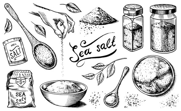 Sea salt set. Glass bottles, packaging and and leaves, wooden spoons, powdered powder, spice in the hand. Vintage background poster. Engraved hand drawn sketch.
