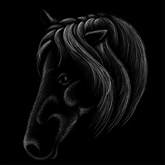The Vector logo horse for T-shirt print  design or outwear.  Hunting style horse background. This drawing would be nice to make on the black fabric or canvas.