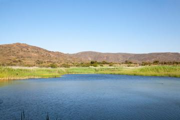 Vrolijkheid Nature Reserve dam and wetlands in evening light  near McGregor, Breede River Valley, Western Cape, South Africa