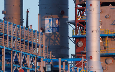 Gazprom logo is seen on a gas processing column under construction at Amur gas processing plant, part of Power Of Siberia project outside the far eastern town of Svobodny