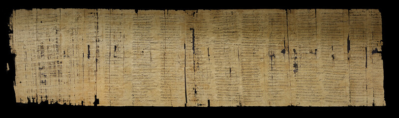 Cursive writing on papyrus Fotomurales