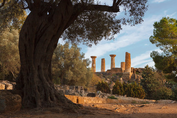 Temple of Heracles in valley of the Temples   in Agrigento