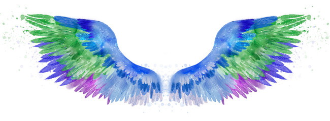 Beautiful blue green pink violet watercolor wings Fotomurales