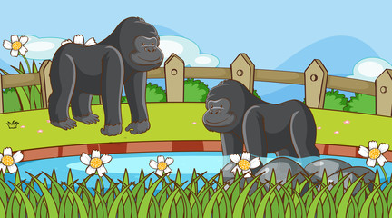 Foto auf Leinwand Kinder Scene with gorilla in the park