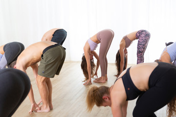 Fotomurales - Group of young sporty attractive people in yoga studio, practicing yoga lesson with instructor, standing together in forward band leg streching pose. Healthy active lifestyle, working out in gym.