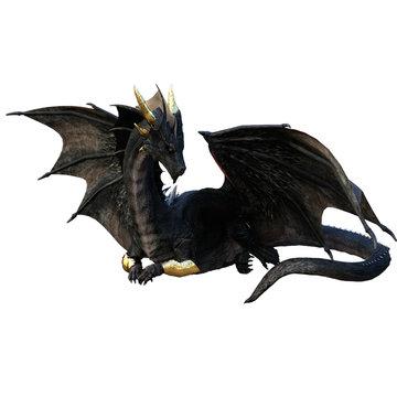 Black dragon sitting dragon fantasy animal mythological creature