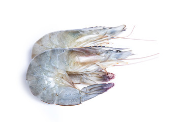 clipping path shrimp isolated on white background