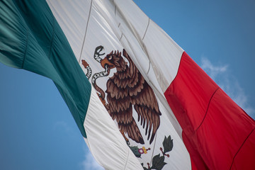 Garden Poster Eagle Mexico flag outdoors with blue sky