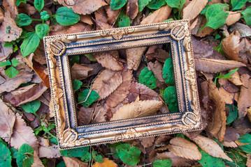 紅葉する秋の日の額縁