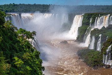 View to Devil`s Throat and Iguazu Falls gorge with brown river, white cascading falls and lush green rainforest in sunshine