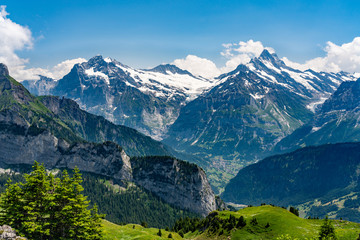 Switzerland, Panoramic view on green Alps and Grindelwald valley from Schynige Platte