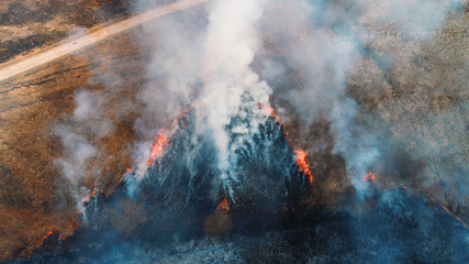 Forest and field fire. Dry grass burns, natural disaster. Aerial view. A large burned field, burning occurs on the banks of a small river.