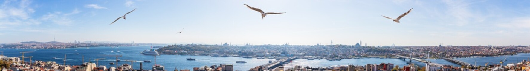Golden Horn in Istanbul, famous sights in full panorama, Turkey