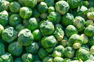 A Closeup Background of Green Brussels Sprouts Fotomurales