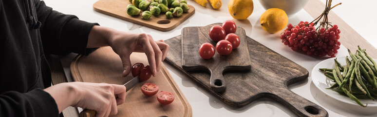 cropped view of commercial photographer making food composition for photo shoot
