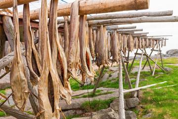 Stockfish on racks to dry