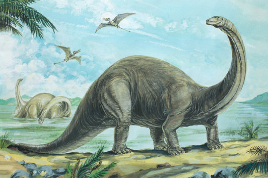 BRONTOSAURUS. One of the heaviest land animals ever known weighing over 20 tons (20tonnes). Length about 60ft (18m). Background: Rhamphorhynchus. Jurassic, about 170 - 135 million years ago.