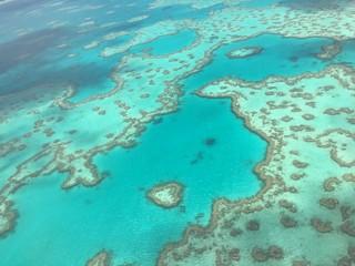 Photo sur Plexiglas Vert corail 絶景!グレートバリアリーフ!幸せのハートリーフ♡を探せ!