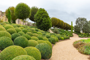 Beatuiful Landscaped garden with boxwood balls near Chateau d'Amboise in Loire valley in France