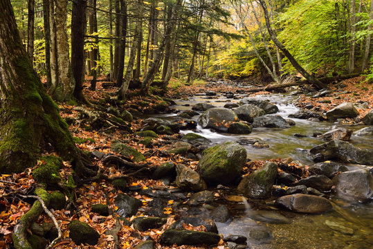 Miller Brook flowing from Lake Mansfield to Waterbury Reservoir at Stowe Vermont in the Fall
