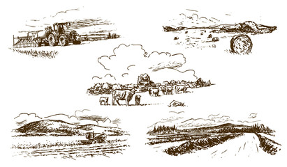 agricultural countryside landscape, set of hand-drawn illustrations (vector) Fotomurales