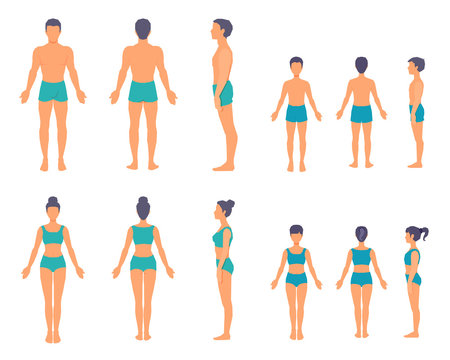 Full-length people's bodies without faces. The human body from different sides. Front, back, side view.