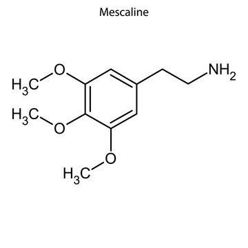 mescaline Skeletal formula of Chemical element