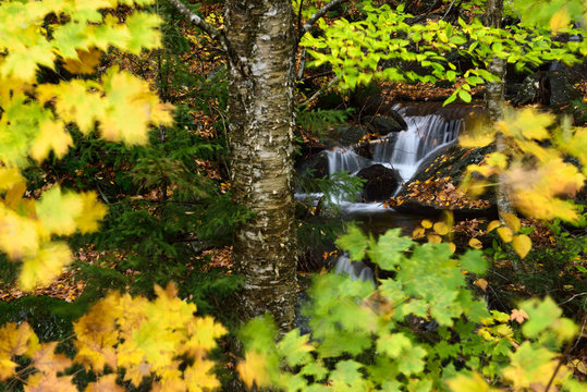 Madonna peak Sterling Range waterfall through Fall tree leaves from Smugglers Notch road Vermont