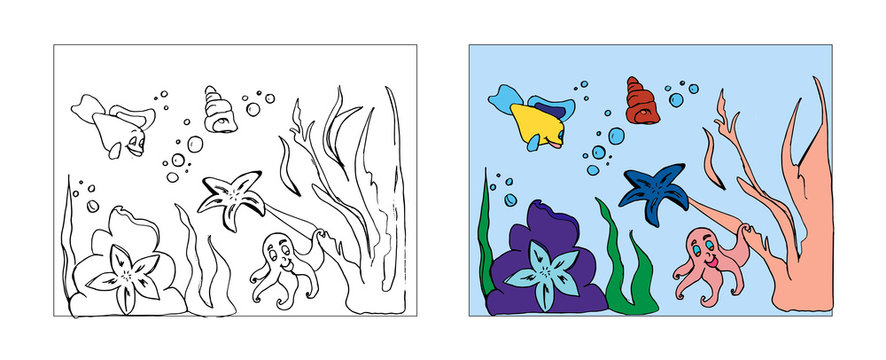 Ocean animals coloring book design with monochrome and colored versions. Freehand sketch for adult anti stress coloring book page with doodle elements. Vector Illustrations for kids book.