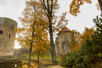 Wall Mural - Autumn park with old castle ruins in Cesis town
