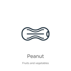 Peanut icon. Thin linear peanut outline icon isolated on white background from fruits collection. Line vector peanut sign, symbol for web and mobile
