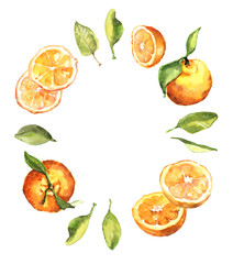 Watercolor hand drawn fresh juicy oranges and leaves circle composition illustration isolated on white background - template, banner design