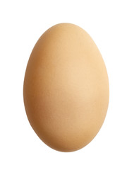 chicken egg closeup isolated on white background