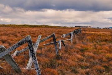 The Tundra, Yukon Delta