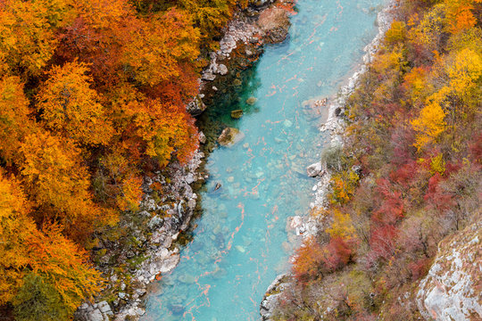 Red autumn forest and blue mountain river aerial view. Montenegro, Tara river canyon.