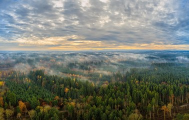 Foggy morning as an aerial above a autumn colored forest.