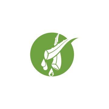 Aloe vera icon Vector Illustration design Logo