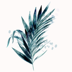 Illustration with vector tropical green palm leaf in watercolor style