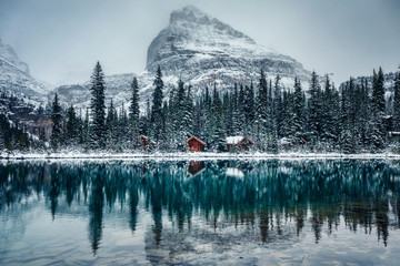 Fototapeten Rosa dunkel Wooden lodge in pine forest with heavy snow reflection on Lake O'hara at Yoho national park