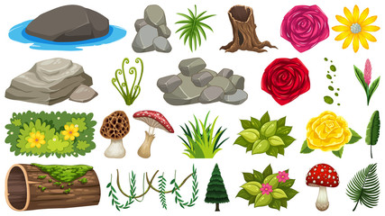 Set of rocks and flowers