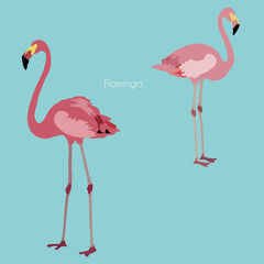Two pink flamingo vector illustration. Picture with exotic birds on a blue background. Endless pattern.