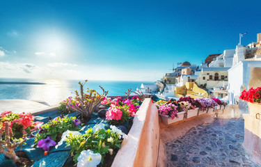 Fotobehang Santorini Santorini, Greece. Picturesqe view of traditional cycladic Santorini houses on small street with flowers in foreground. Oia village, Santorini, Greece. Vacations background.