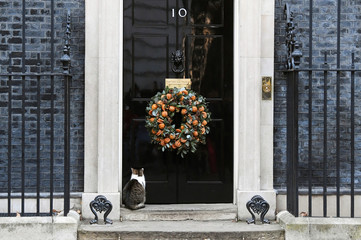Larry the cat waits at the front door of 10 Downing Street decorated with a Christmas festive wreath, in London
