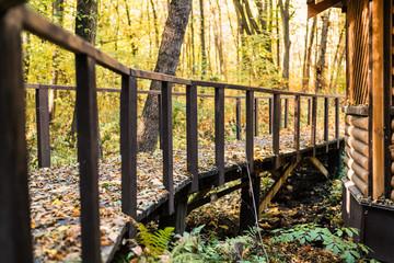 Wooden steps in golden autumn forest in Ukraine