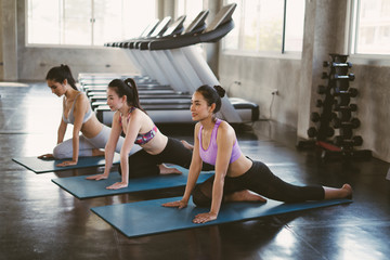 Group of young asian women sporty attractive people practicing yoga lesson with instructor, standing or sitting together in gym.Female friends are doing yoga exercise,working out,studio background.