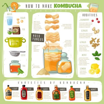 Kombucha tea infographics