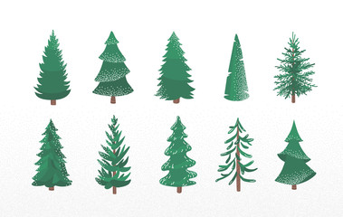 Fototapeta Set of fir tree with snow texture. Pine and spruce xmas vector illustration isolated on white background. Simple flat cartoon green plant elements for christmas decorating obraz